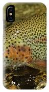 Fly Fishing Patagonia, Argentina IPhone Case