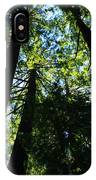Giant Redwoods IPhone Case