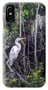 Heron Colors IPhone Case