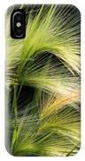 Hordeum Jubatum Grass IPhone Case