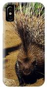 Porc Epic A Crete Hystrix Cristata IPhone Case