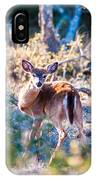 White Tail Deer Bambi In The Wild IPhone Case