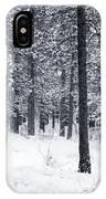Winter In Pike National Forest IPhone Case