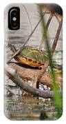 42- Florida Red-bellied Turtle IPhone Case