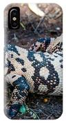 Hiss IPhone Case
