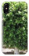 vegetation in the Canary Islands IPhone Case