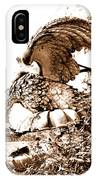 Campania Caserta Carditello Plazzo Reale IPhone Case