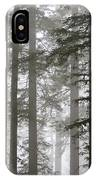Foggy Coast Redwood Forest IPhone Case