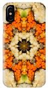 Kaleidoscope Vegetable Sushi IPhone Case