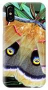 Polyphemus Moth IPhone Case