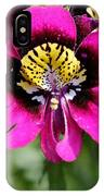 Schizanthus From The Hit Parade Mix IPhone Case