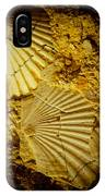Seashell In Stone IPhone Case