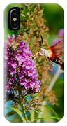 Snowberry Clearwing Hummingbird Moth IPhone Case