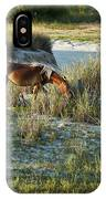 Wild Spanish Mustang IPhone Case