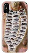 50 Fish From American Waters IPhone Case