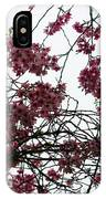Cherry Blossoms In The Sky IPhone Case