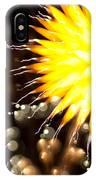 Fireworks Art IPhone Case