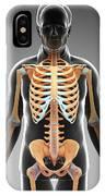 Male Skeletal System IPhone Case