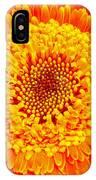 Orange Gerber IPhone Case