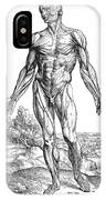 Vesalius: Muscles, 1543 IPhone Case