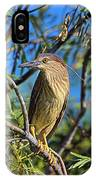 Black-crowned Night Heron (nycticorax IPhone Case