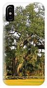 Louisiana Live Oak Tree IPhone Case