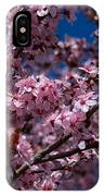 Plum Tree Flowers IPhone Case