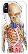 Female Anatomy IPhone Case