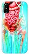 Female Anatomy IPhone Case
