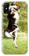 Border Collie In The Nature IPhone Case