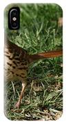 Brown Thrasher IPhone Case