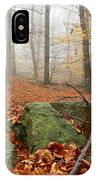 In The Autumn Forest IPhone Case