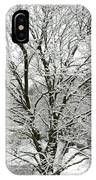 A Wintery View Along Conifer Drive In Burnt Hills IPhone Case