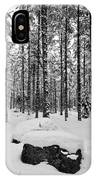 Pine Forest Winter IPhone Case