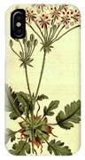 Botanical Print By Sydenham Teast Edwards 1768 – 1819 IPhone Case
