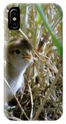 A Baby Quail Looks Back IPhone Case