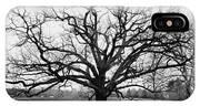 A Bare Oak Tree IPhone X Case