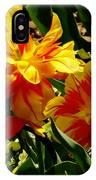 A Beautiful Fire IPhone Case
