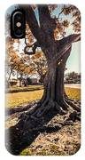 A Big  Tree Trunk Of Long Beach In The Autumn IPhone Case