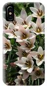 A Bouquet Of Miniature Tulips Celebrating The Spring Season - Vertical IPhone Case