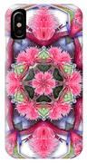 A Burst Of Bromeliad IPhone Case