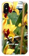 A Cage Of Canary Cymbidiums IPhone Case