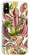 A Collection Of Nepenthaceae IPhone Case