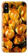 A Crowd Of Crocuses IPhone Case