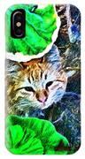 A Curious Cat IPhone X Case