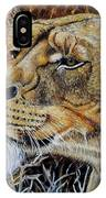 A Curious Lioness IPhone Case