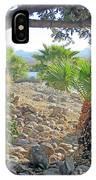 A Desert Landscape IPhone Case