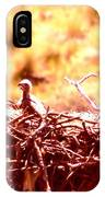 A Eaglet In Down IPhone Case