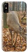 A Eight Point Buck 1261 IPhone Case