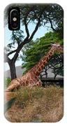 A Giraffe Rests In Honolulu IPhone Case